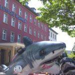 Protest gegen die Deutsche Wohnen